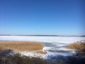 Der Strelasund im Winter